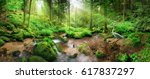 enchanting panoramic forest... | Shutterstock . vector #617837297