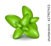 basil leaves isolated on white... | Shutterstock .eps vector #617907413