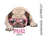 Stock vector pug puppy in a pink glasses repose vector illustration 617984117