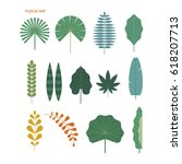 tropical leaf source vector... | Shutterstock .eps vector #618207713