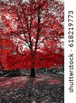 tall red tree in a black and... | Shutterstock . vector #618219773