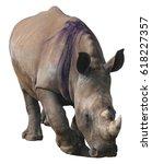 white rhinoceros  square lipped ...   Shutterstock . vector #618227357