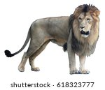 african lion isolated on white... | Shutterstock . vector #618323777