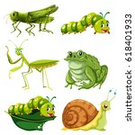 different types of insects in... | Shutterstock .eps vector #618401933