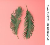 tropical palm leaves on pink... | Shutterstock . vector #618487943