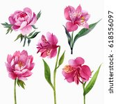 floral set  peonies and lilies...   Shutterstock . vector #618556097