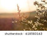 spring flowers | Shutterstock . vector #618583163