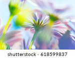 spring flowers background ... | Shutterstock . vector #618599837