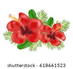 two red hibiscus flower with...   Shutterstock .eps vector #618661523