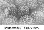 pineapple in black and white   ...   Shutterstock . vector #618797093