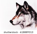 Drawing Wolf On Old Paper ...