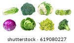 collection cabbages isolated on ... | Shutterstock . vector #619080227