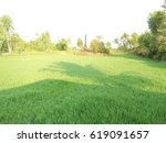 green meadow | Shutterstock . vector #619091657