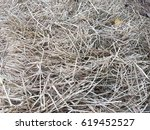 dry straw background   Shutterstock . vector #619452527