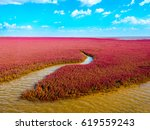 Small photo of The Red Beach, located in the Liaohe Delta some 30km near Panjin City, Liaoning, China is a marshy area important to bird life and covered with red suaeda grass which thrives in the saline conditions