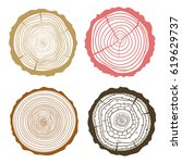 tree rings. set of cross... | Shutterstock .eps vector #619629737