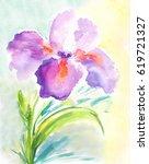 watercolor iris. purple iris... | Shutterstock . vector #619721327