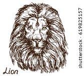 lion portrait  hand drawn... | Shutterstock .eps vector #619825157