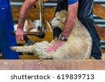 queenstown  new zealand   feb 6 ...   Shutterstock . vector #619839713