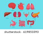 organ vector illustration | Shutterstock .eps vector #619853393