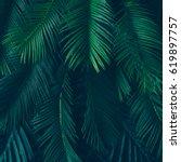 Creative Nature Layout Made Tropical - Fine Art prints