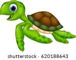 Cartoon Turtle Isolated On...