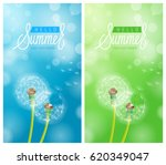dandelion flower background and ... | Shutterstock .eps vector #620349047