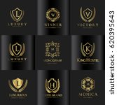 luxury logo set  | Shutterstock .eps vector #620395643