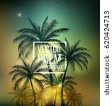 summer bannervector palm... | Shutterstock .eps vector #620424713