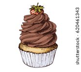 hand drawn chocolate cupcake... | Shutterstock .eps vector #620461343