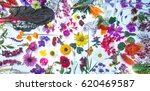 beautiful mixed colorful...   Shutterstock . vector #620469587