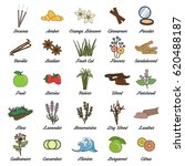 collection of icons for... | Shutterstock .eps vector #620488187
