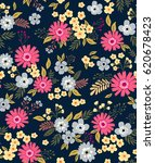 floral pattern. pretty flowers... | Shutterstock .eps vector #620678423