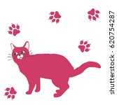 fluffy cat   illustration    Shutterstock .eps vector #620754287