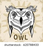 ethnic owl  african  indian ... | Shutterstock .eps vector #620788433