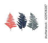 fern. set of leaves in red ... | Shutterstock .eps vector #620928287