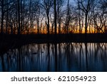 sunset in moody dark forest.... | Shutterstock . vector #621054923