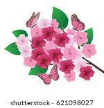 vector illustration of cherry... | Shutterstock .eps vector #621098027
