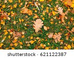 texture of autumn leaves.... | Shutterstock . vector #621122387