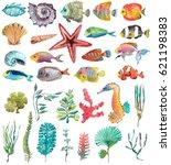 watercolor sea life  seaweed ... | Shutterstock . vector #621198383