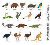 cute set of australian animals | Shutterstock .eps vector #621274013
