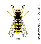 wasp     rather dangerous... | Shutterstock .eps vector #621292313