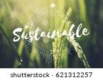 alternative farming sustainable ... | Shutterstock . vector #621312257