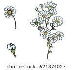 hand drawn cutter flower ...   Shutterstock .eps vector #621374027