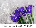 Bouquet Of Violet Irises On...