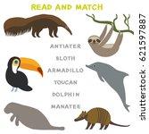 kids words learning game... | Shutterstock .eps vector #621597887