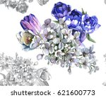 hand painting white lilac and... | Shutterstock . vector #621600773