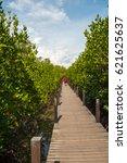 mangrove forest | Shutterstock . vector #621625637