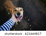 dog friend of the owner | Shutterstock . vector #621664817