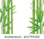 green bamboo frame with stems... | Shutterstock .eps vector #621794183